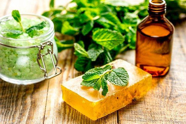 10 skvělých způsobů, jak využít meduňku