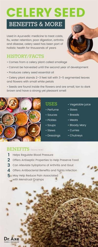 Celerový esenciální olej (ze semen) a jeho účinky za zdraví – na co je dobrý?