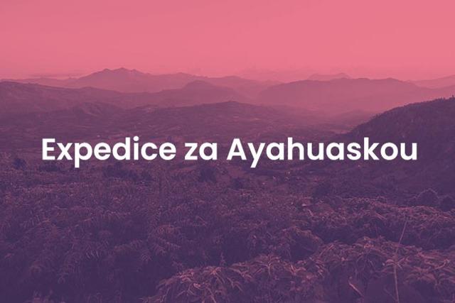 Co je Ayahuasca a jaké má účinky?