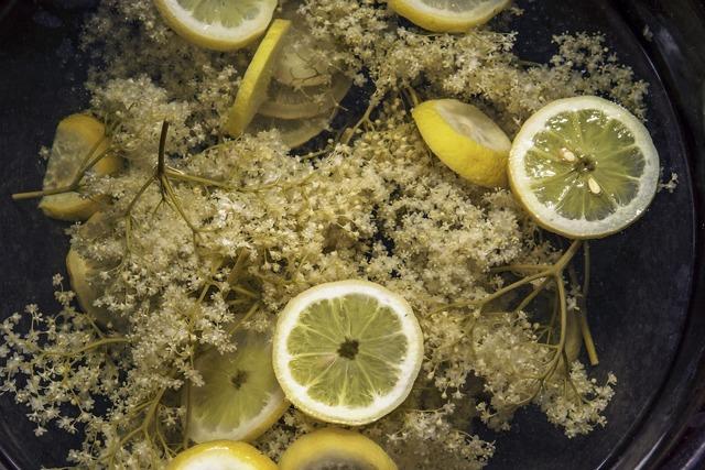 Recept na bezový sirup, lahodný a léčivý nápoj našich babiček