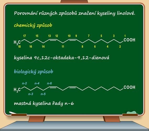Kyselina puniková a její účinky na zdraví