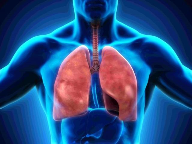 Dýcháte správně? Správná dechová vlna – zkuste dýchat takto