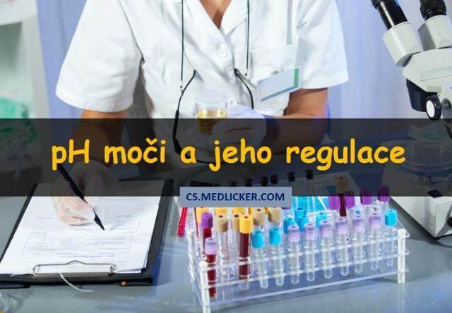 Jaká je normální pH hodnota krve člověka a jak ji změnit?