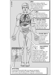 Cystická fibróza – příznaky, příčiny a léčba