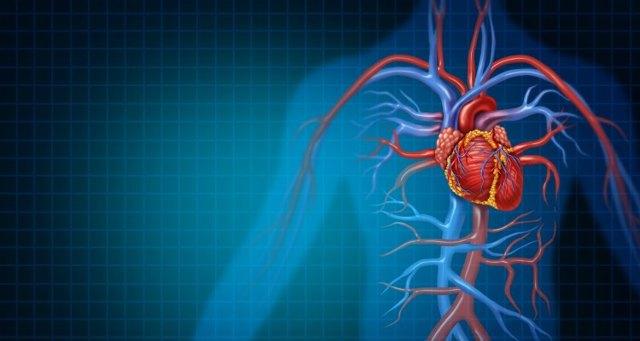 Kalisthenika je posilování s vlastní vahou – jaké má účinky a benefity pro vaše zdraví + ukázky cviků