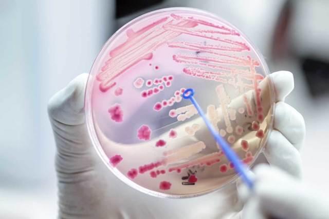 Test CRP spolehlivě pozná, jestli skutečně potřebujete antibiotika. Jaký a zakolik?