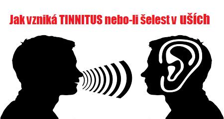 Život ve třech: partnerství a tinnitus
