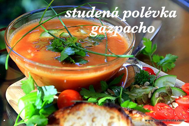Studené polévky: Na gazpacho potřebujete pár surovin a lednici