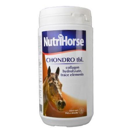 Kloubní výživa pro koně– dobrý nápad pro lidi?