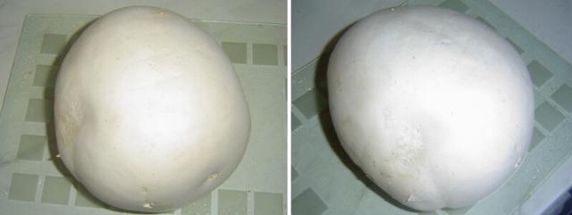 Pýchavka vatovec– méně známá houba, výborná na řízky