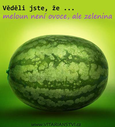 Čím je meloun zdraví prospěšný a kdy může škodit?