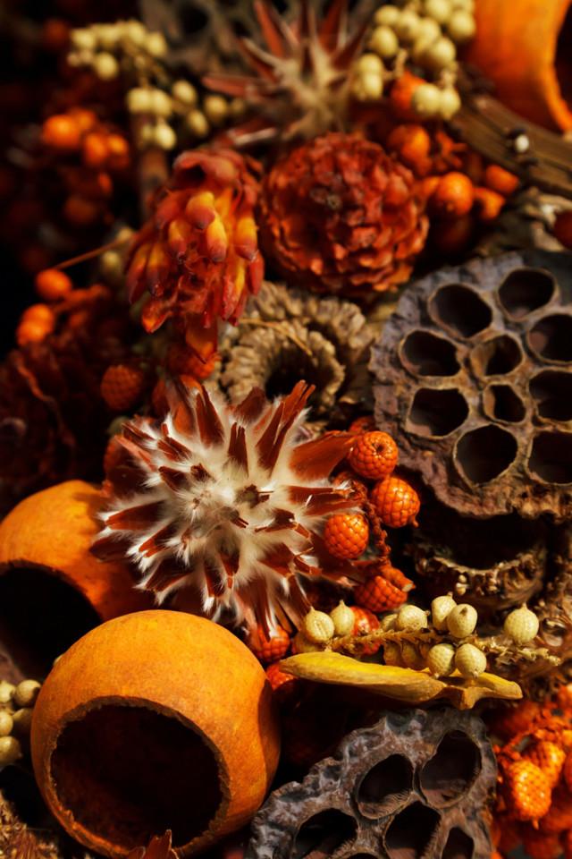Vánoční přípitek by měl vonět po citrusech