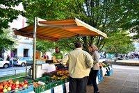 Na Kulaťáku bude farmářský trh iFestival ambasád