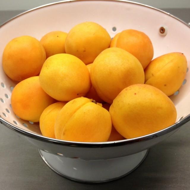 Test meruňkových zavařenin. Rozdíly jsou vobsahu ovoce icukru