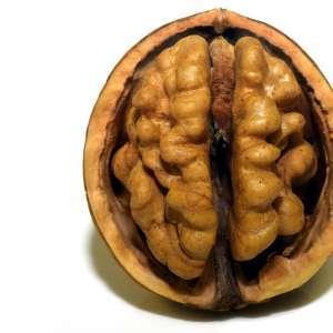 Potraviny, které vyživí váš mozek