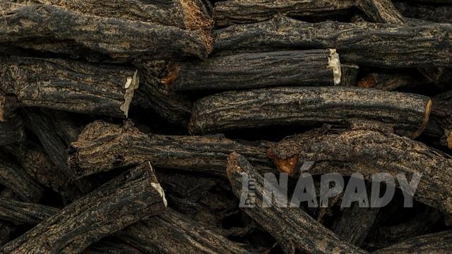 Černý kořen: z kostivalu se dělá hojivá mast
