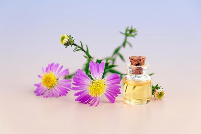 Přírodní repelenty: účinná alternativa kchemii