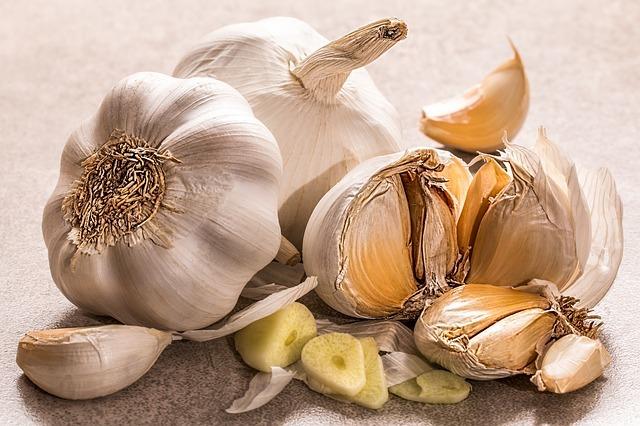 Potraviny sléčivými bylinkami zlepšují imunitu