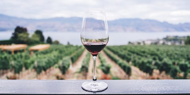 Víno, po kterém nikdy nebolí hlava