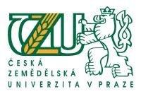 Jarní sortiment farmářských trhů: kdy bude čerstvá česká zelenina?