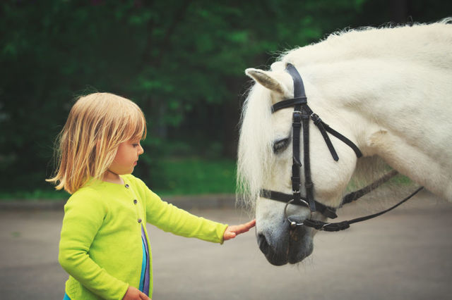 Hipoterapie - když vás léčí kůň