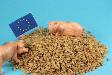Deset miliónů pro farmářské trhy