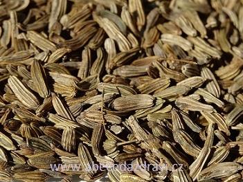 Fenyklový čaj na bolavé břicho a další recepty ze semínek