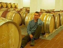Seriál o víně: Proč bio?