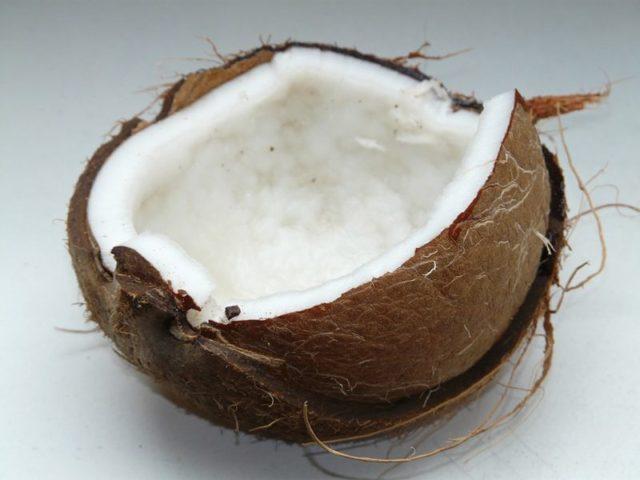 Kokosová voda není mléko