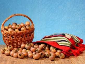 Středomořská strava místo pivo-vepřo-knedlo-zela