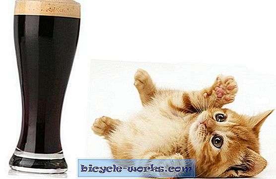 Pivo na kole. Je to zločin?