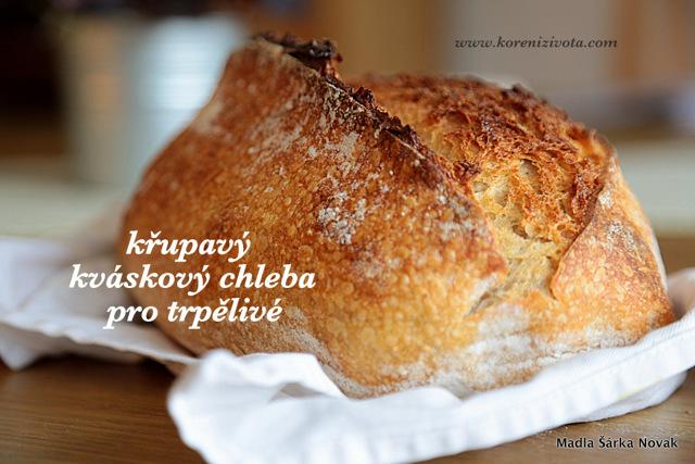 Pekařský med je levnější, ale na chleba nepatří