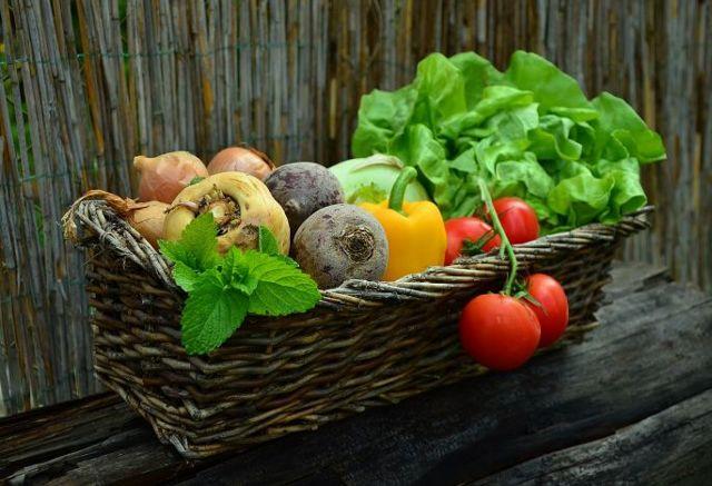 Proč jsou biopotraviny drahé?