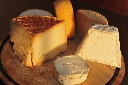 Je ten sýr plísňový, nebo už plesnivý?