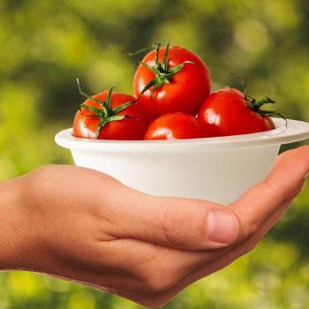 Vitamíny mají svá rizika, zjistila nová studie