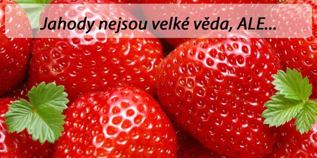 Jahody, které se prodávají, nejsou české. Zatím