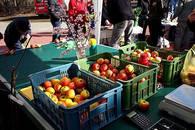 Farmářský trh - záruka kvality? Bohužel ne