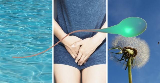 Hledá se dárce kvalitních spermií