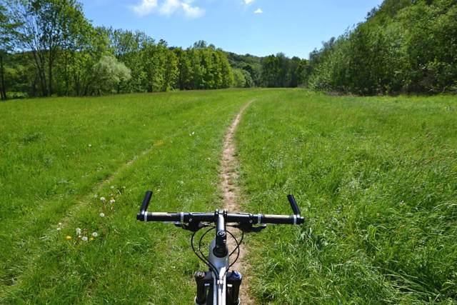 Cyklistům začala sloužit opravená lesní cesta do Litovelského Pomoraví