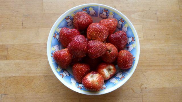 Žijeme v době jedové - čeho se nemusíme bát?