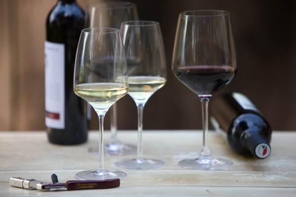 Svatomartinské víno na pultech již dnes. Jaké je?