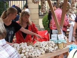 Český česnek již koupíte na farmářských trzích