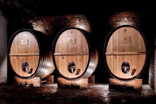 Seriál o víně: Máme víc než Müller Thurgau?