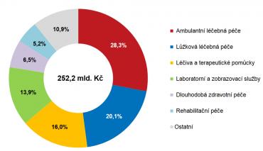 Jak si Češi doplácejí na zdraví?