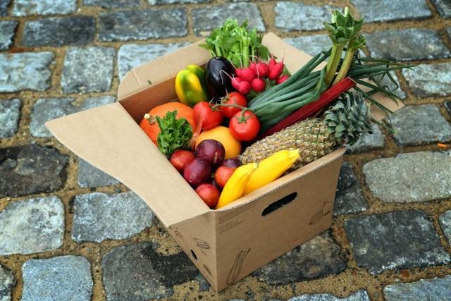 Freshbedýnky: rozšířený eshop, dodavatelé a sortiment