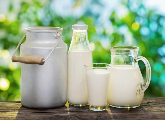 Zdroje vápníku a jak je to vlastně s mlékem