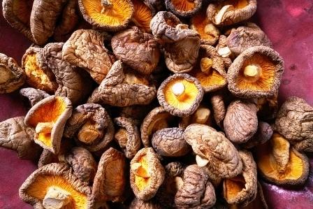 Houba shiitake (šitake) a zdraví – jaké má účinky?