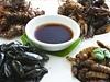 Hmyz jako jídlo – zdravý i překvapivě chutný