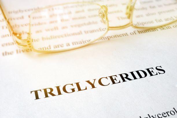 Potraviny s vysokým obsahem triglyceridů