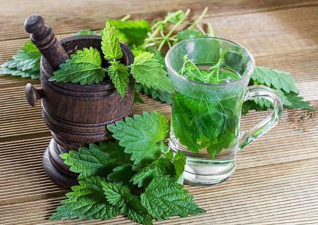 Hubnutí s bylinkami – jak na to?